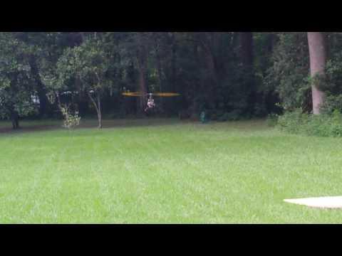 Ofer Plotnik fly T-Rex 600 July 9th 2016 Eyal Plotnik Home