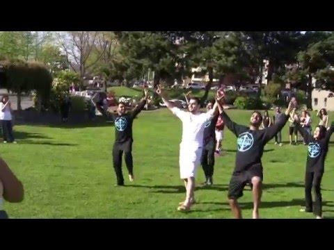 EPIC Bollywood & Bhangra Flashmob (Proposal) at Kirkland's Marina Park (Waterfront)