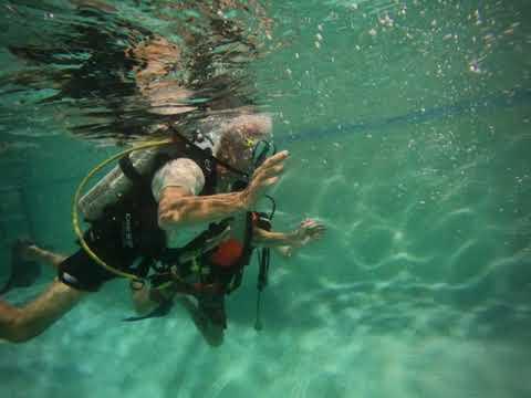 Try Scuba Diving - 26 Oct 2021 | Try Scuba Diving - 26 Oct 2021