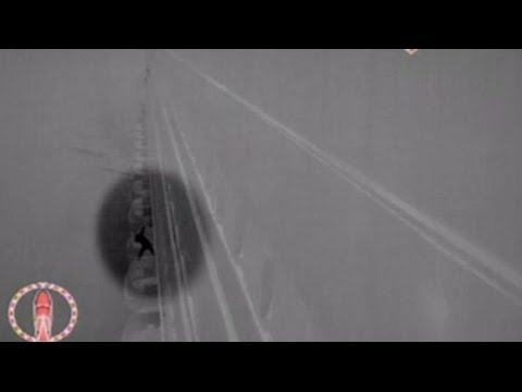 Woman's Terrifying Fall From Cruise Ship Caught on Tape