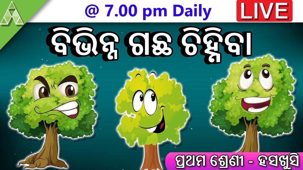Class-1   Chapter-2   Chheli Dare Paniku   Bibhinna gachha chinhiba  Aveti Learning  Live Class 