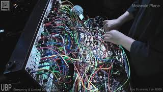 MoleculePlane Live at NOON OSAKA 2020.08.02