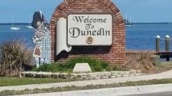 Moving to Dunedin Florida