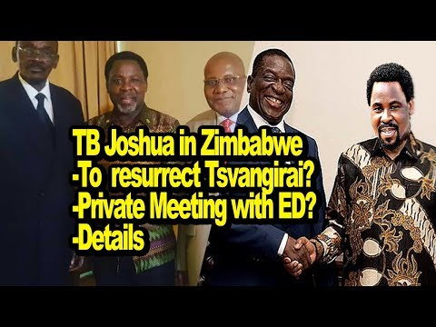 TB Joshua in Zimbabwe, Private meeting with ED, Details