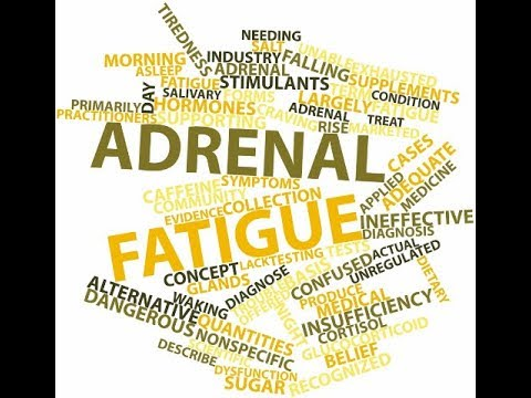 Addressing Adrenal Gland Issues