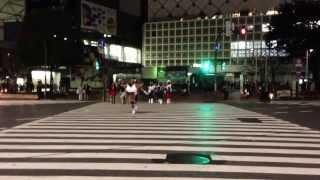 Happy DBZ Halloween !!! (Tokyo)