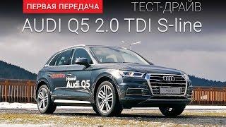 Audi Q5 2017 (Ауди Ку5 2017): тест-драйв  от