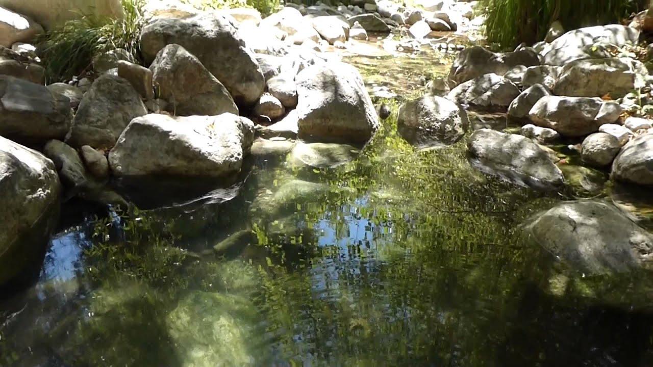 Gay Personals in Tassajara Hot Springs