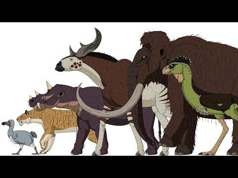 Cenozoic Beasts - Animated Size Comparison