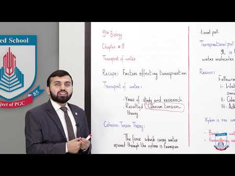 Class 9 - Biology - Chapter 9 - Lecture 4 Transport of Water - Allied Schools