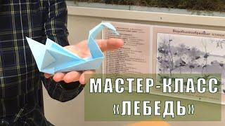 "Вологодский музей онлайн / Мастер-класс ""Лебедь"" к Международному дню птиц"