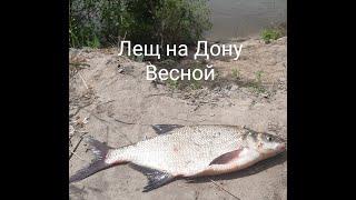 ЛЕЩ на Дону весной Рыбалка 2021