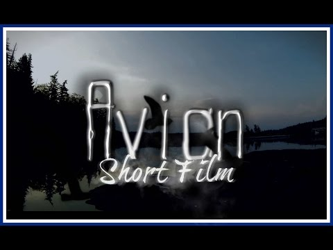 Avian [An Original Model Horse Film]