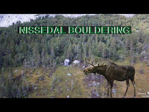 NISSEDAL | VLOG #75