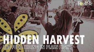 Hidden Harvest - The food hiding in plain sight