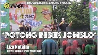 Gambar cover Potong Bebek Jomblo | Indonesian Dangdut Music | Liza Natalia | Official Zumba® Brand Ambassador