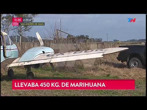 Avioneta narco derribada con 450 kilos de marihuana en San Antonio de Areco