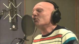 Saban Saulic - Zal - ( Nova pesma 2013 )...