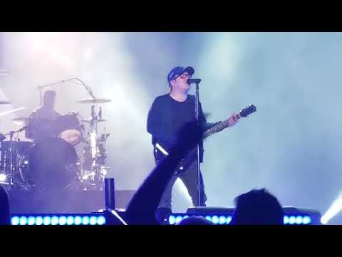Fall Out Boy| Chicago Wrigley Intro and Disloyal Order of Water Buffalos