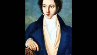 Vincenzo Bellini (1801-1835) Symphony in D major     1-Largo