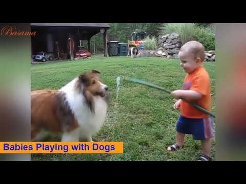 Adorable Babies Playing with Dogs and Cats 🐶 🐱- Part2