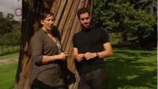 Sitcom Does Romance - Miranda Hart and Tom Ellis