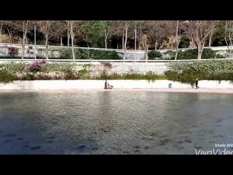 Parc de la creueta del coll youtube for Piscina creueta del coll