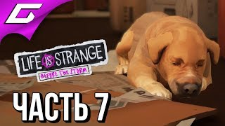 LIFE is STRANGE 2: Before the Storm Ep.2 ➤ Прохождение #7 ➤ ТАЙНАЯ ОПЕРАЦИЯ