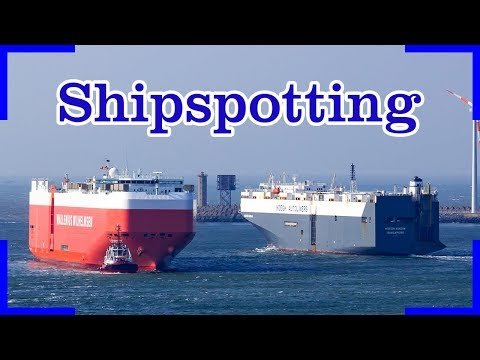 Shipspotting in Zeebrugge | Carcarrier, Pilot Vessel, Containerships, RoRo...