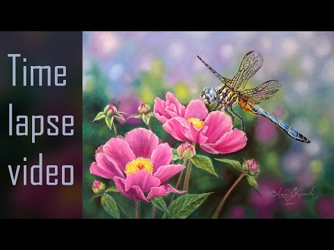 Dragonfly - Pastelmat paper with Pan pastels and colored pencils - Time Lapse