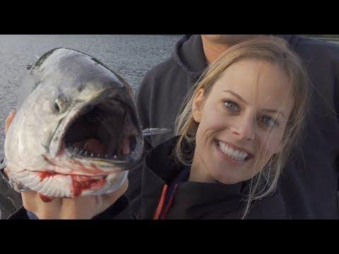 San Juan Islands King Salmon {Catch Clean Cook} Cedar Plank Salmon- Absolutely DELICIOUS!!!