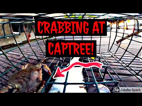 Crabbing At Captree State Park! Underwater Footage!