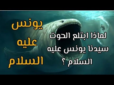 قصص الأنبياء قصة سيدنا يونس عليه السلام دعاء سيدنا يونس في بطن الحوت سبحان الله Youtube