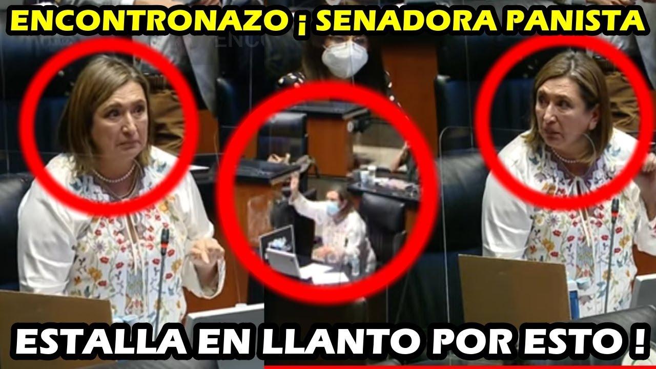 ENCONTRONAZO ¡ TERMINA MAL ! ¡ SENADORA XOCHITL GALVEZ ESTALLA EN LLANTO POR ESTO !