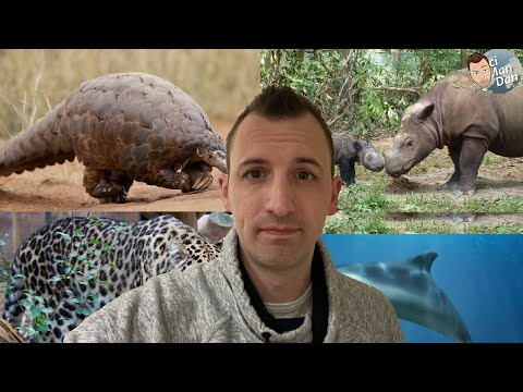 The Top 5 Rarest Animals on Earth! thumbnail