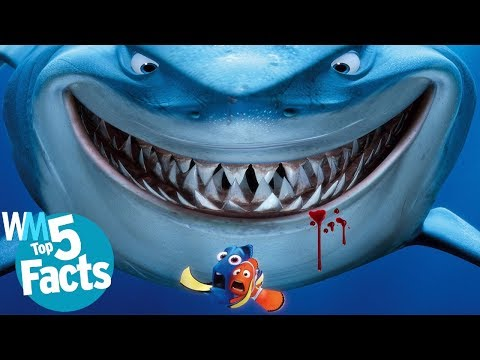 Top 5 Bloody Shark Attack Facts