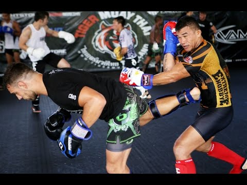 Pro Fighter Sparring