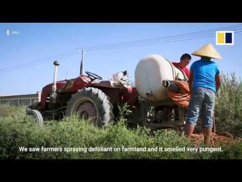 China's Farming Drones