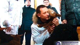 """""""Альметьевск сегодня"""" эфир 24.01.2017"""