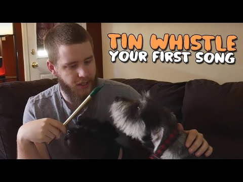 How to Play Your First Song on a Tin Whistle
