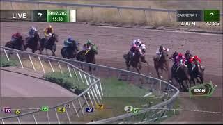 Vidéo de la course PMU PREMIO GINKO BILOBA HANDICAP