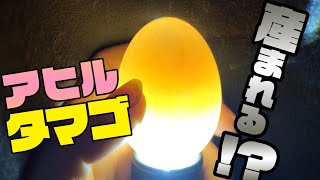 アヒルの卵の神秘!検卵した結果まさかの変化が!!?
