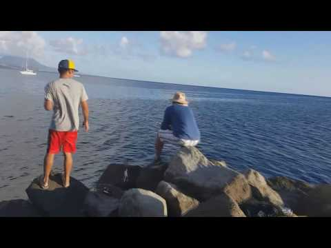 Pastime Fishing Adventures In St Kitts And Nevis