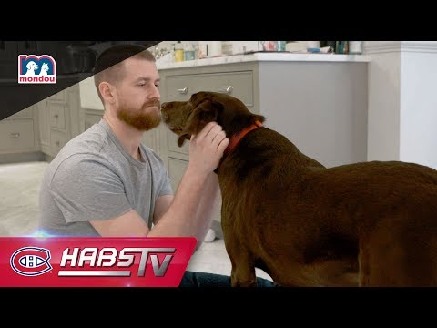 Jeff Petry and his chocolate Labrador, Nellie