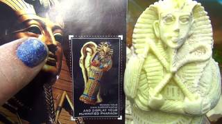 REAL EGYPTIAN DIG ADVENTURE KIT WOW! ON FUN HOUSE TV