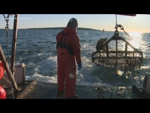 Cool Jobs: Frozen Maine Fishermen