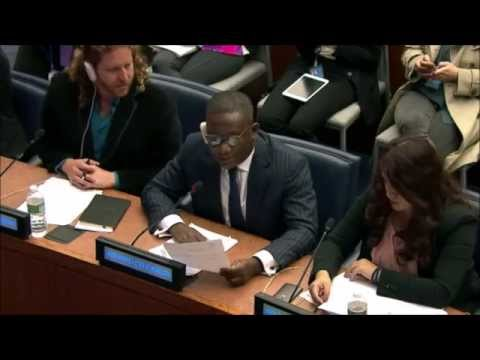 Mr. Samuel Mensah-Baah - VSO West and Central Africa - May UN Post-2015 negotiations