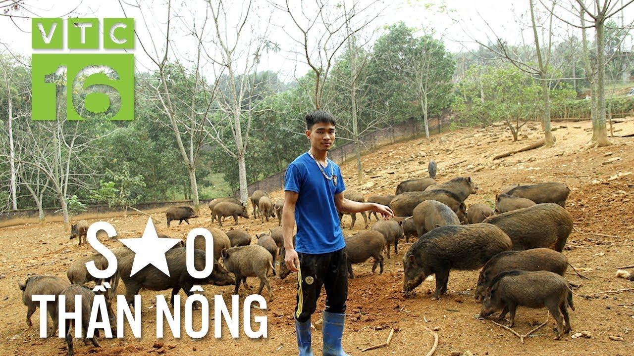 28 tuổi trở thành tỷ phú lợn rừng | VTC16