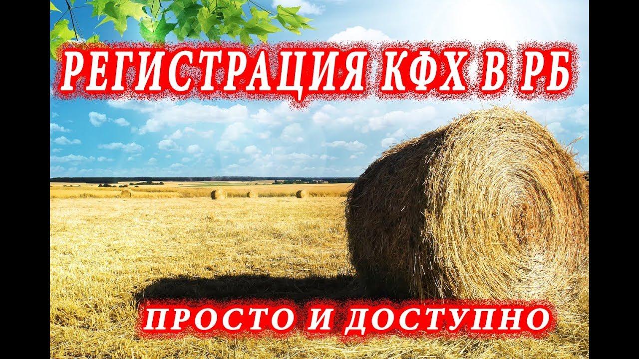 Регистрация КФХ В РБ // Просто и доступно.