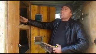 ОБЗОР КЛЕТКИ  УЛИЧНОГО СОДЕРЖАНИЯ КРОЛИКОВ.